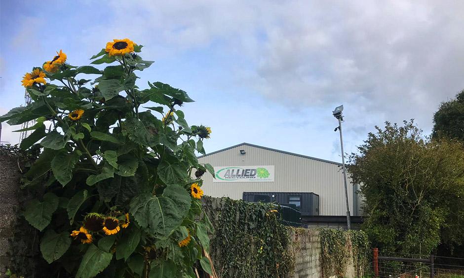 Clonmellon Community Garden